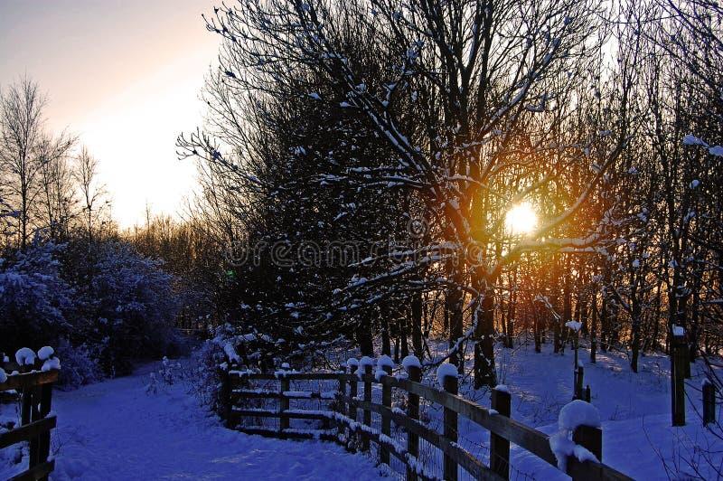 Het eind van de dag van de perfecte winter stock afbeeldingen