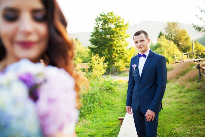 Het elegante bruid en bruidegom stellen samen in openlucht op een huwelijk DA stock afbeelding