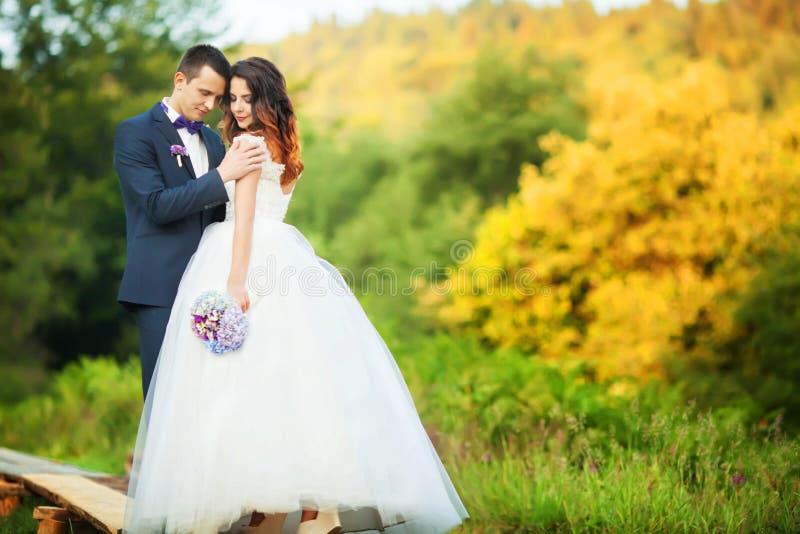 Het elegante bruid en bruidegom stellen samen in openlucht op een huwelijk DA royalty-vrije stock foto's