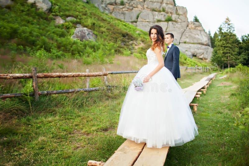 Het elegante bruid en bruidegom stellen samen in openlucht op een huwelijk DA royalty-vrije stock fotografie