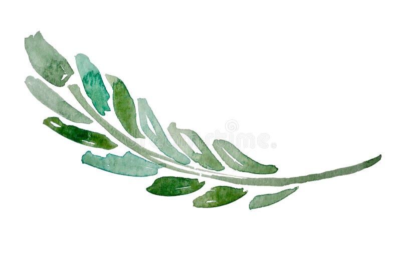 Het element van de de waterverfplantkunde van de handtekening vector illustratie