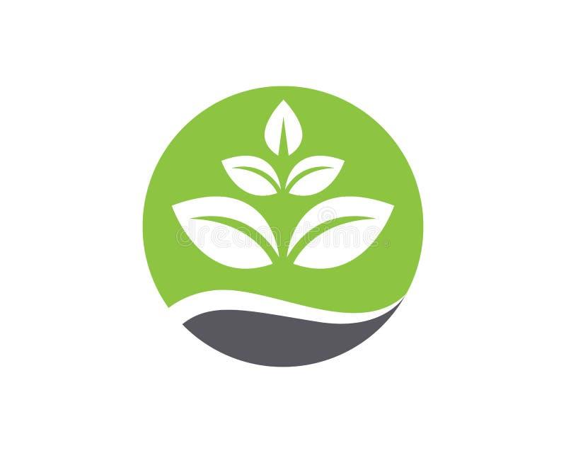 Het embleem en het symboolmalplaatjevector van de blad groene aard