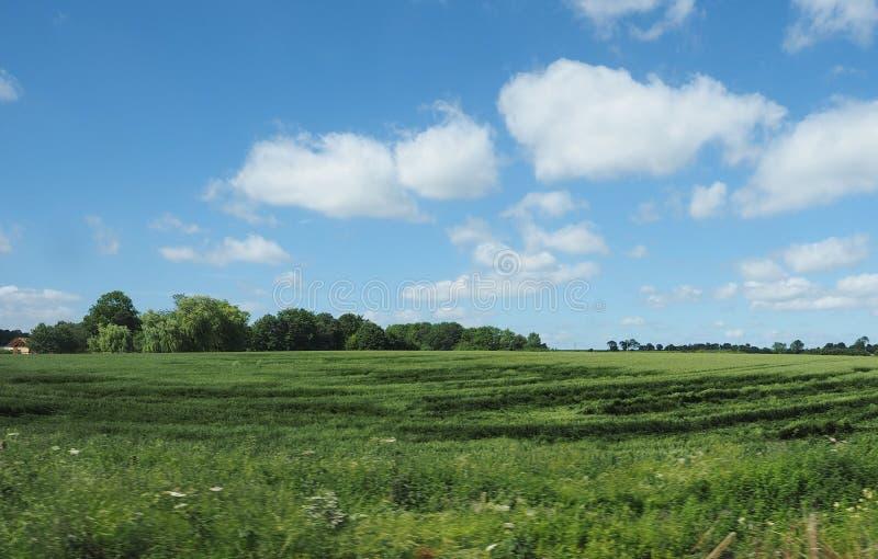 Het Engelse panorama van het land stock foto
