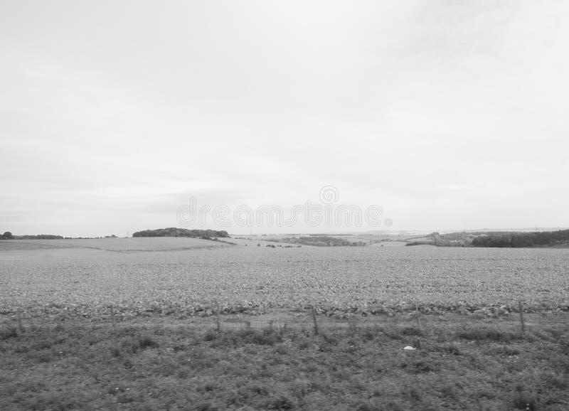 Het Engelse panorama van het land in Salisbury in zwart-wit stock fotografie