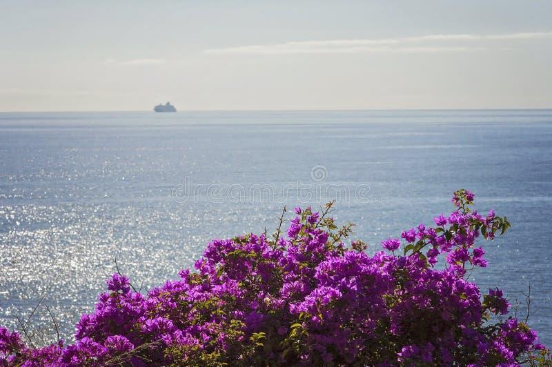 Het ervaren van Madera Funchal en zijn verbazende aard in Portugal, een paradijseiland in het midden van de Atlantische Oceaan stock afbeeldingen