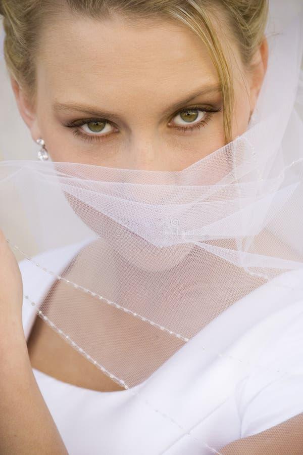 Het exotische Gezicht van de Dekking van de Bruid met Sluier stock afbeelding