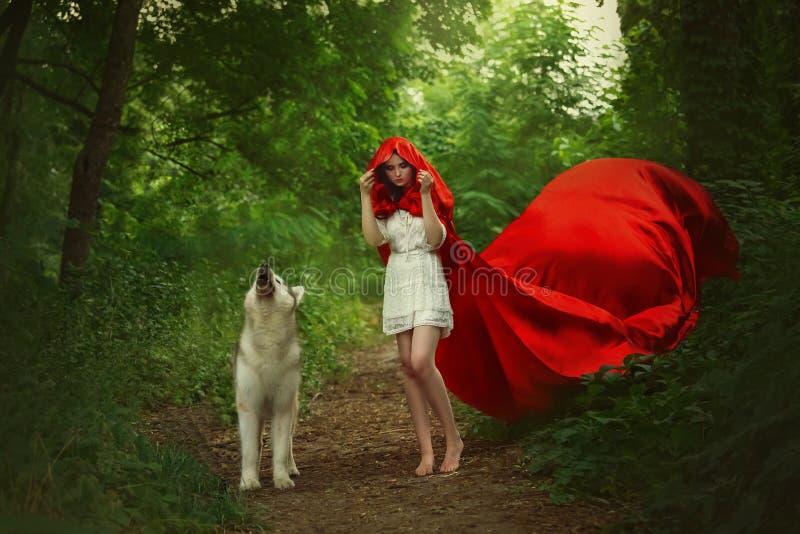 Het fabelachtige meisje met donker haar in korte lichte witte kleding behandelt haar hoofd met kap van het lange heldere rode het stock fotografie