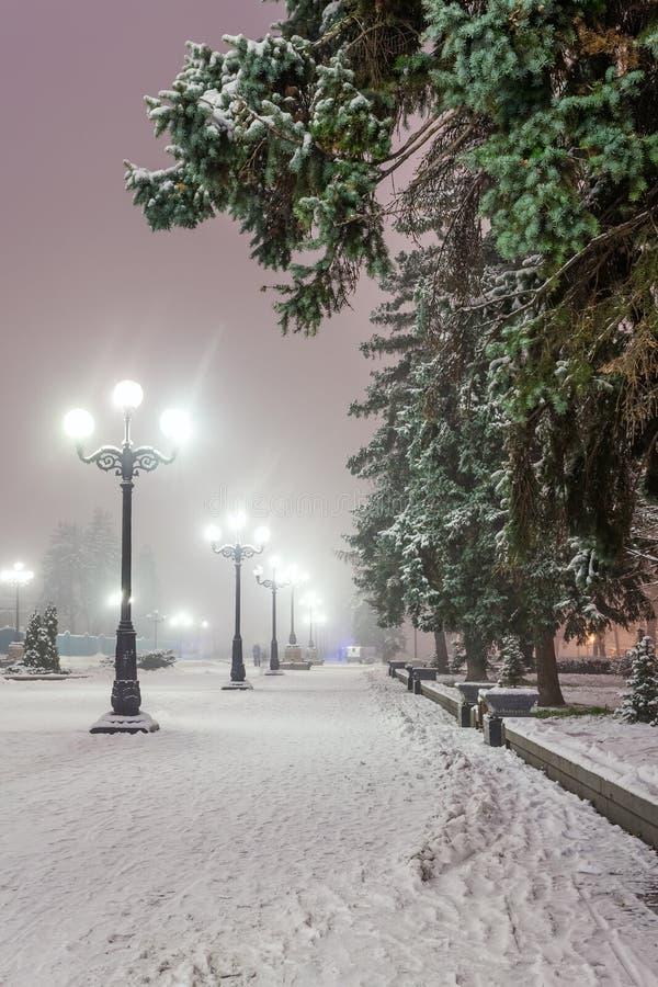 Het fabelachtige park van de de winterstad royalty-vrije stock afbeeldingen