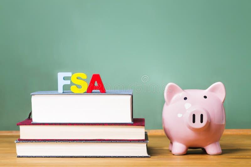 Het federale thema van StudentenAid met handboeken en spaarvarken royalty-vrije stock afbeelding