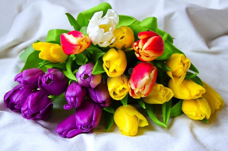 Het feestelijke boeket van kleurrijke tulpen sluit omhoog royalty-vrije stock afbeeldingen