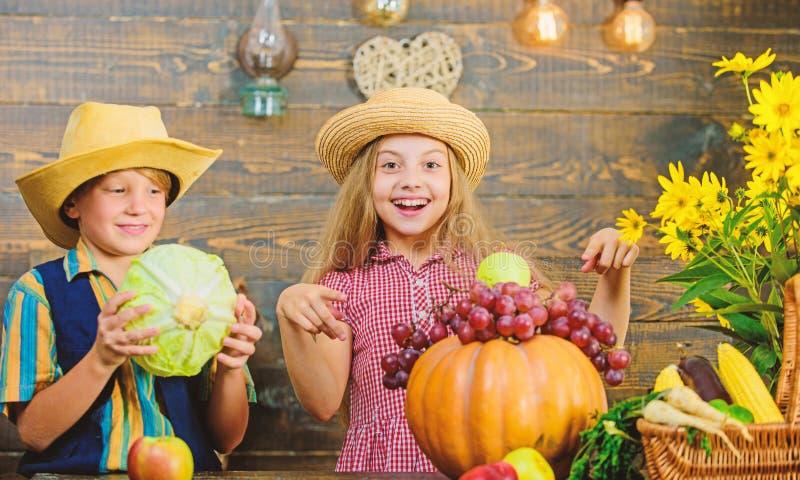 Het festival van de de herfstoogst Vier oogstvakantie De kinderen spelen groenten houten achtergrond Basisschooldaling royalty-vrije stock afbeelding