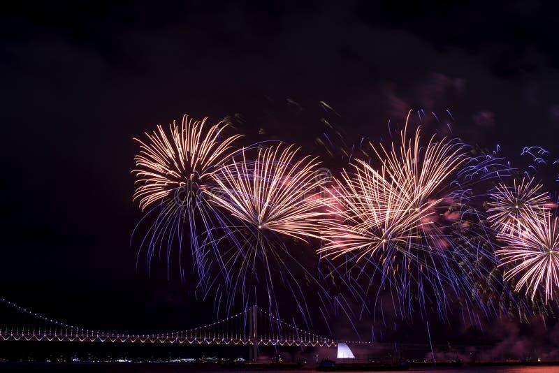 Het Festival 2016 van het Busanvuurwerk - Nachtpyrotechniek royalty-vrije stock afbeeldingen