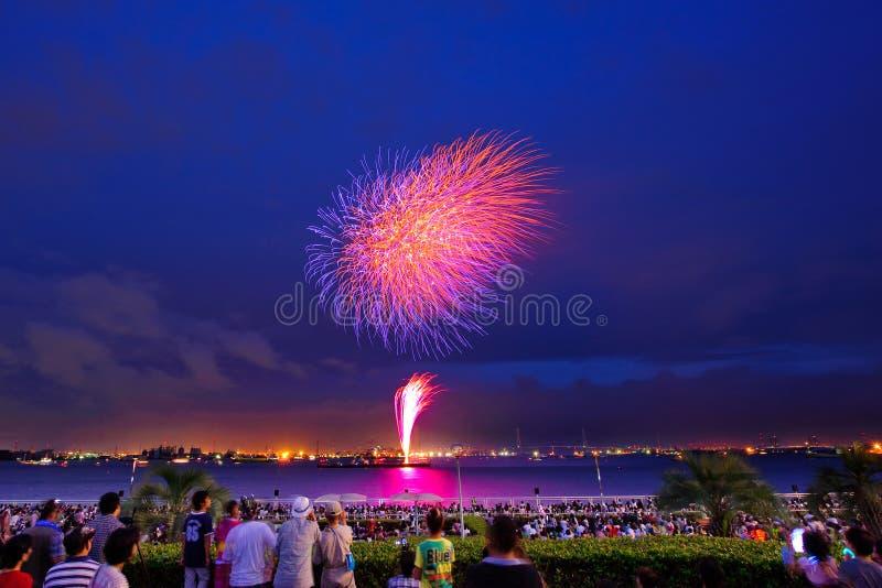 Het Festival van het Vuurwerk van de zomer stock afbeeldingen