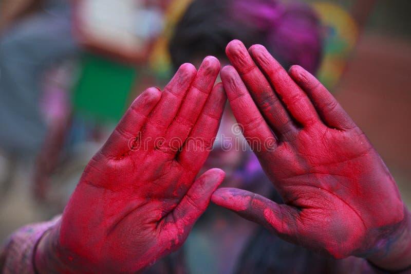 Het festival van Holi in India royalty-vrije stock fotografie
