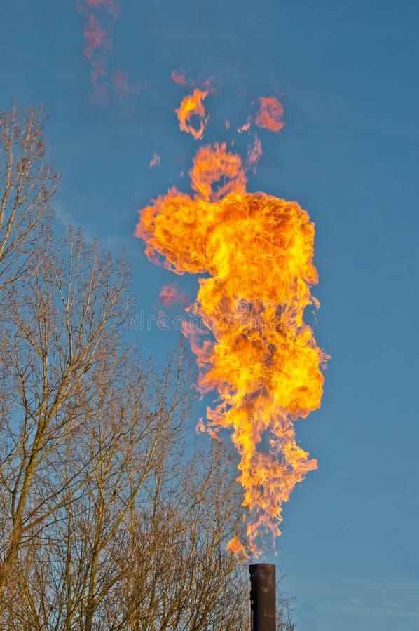 Het flakkeren van vlammen tegen een blauwe hemel stock foto
