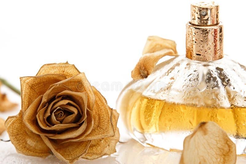 Het flesje parfum en droog nam bloem toe royalty-vrije stock afbeelding