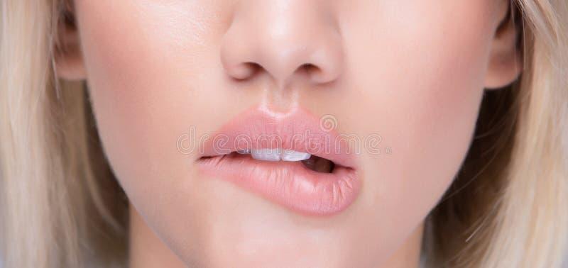 Het flirtende sexy meisje bijt haar sappige lippen royalty-vrije stock afbeeldingen