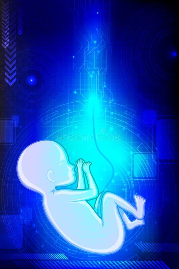 Het Foetus van de baby vector illustratie