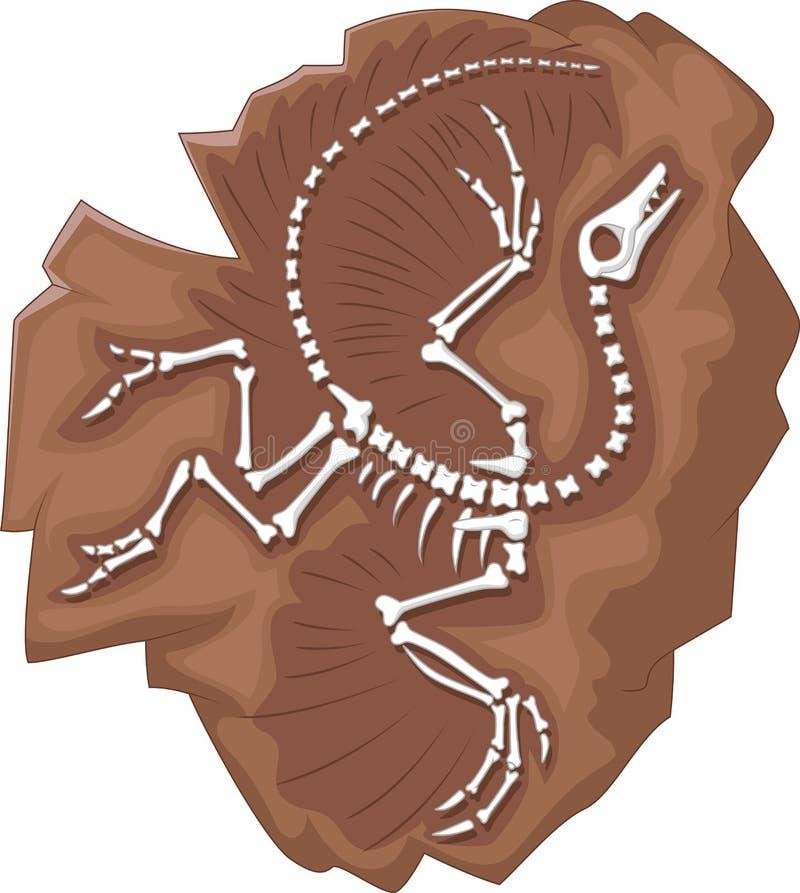 Het fossiel van beeldverhaalarcheopteryx royalty-vrije illustratie