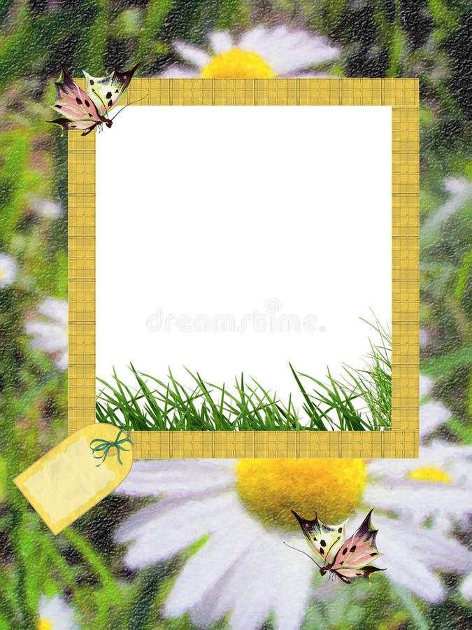Het foto-kader/de achtergrond van de zomer voor gelukwens vector illustratie