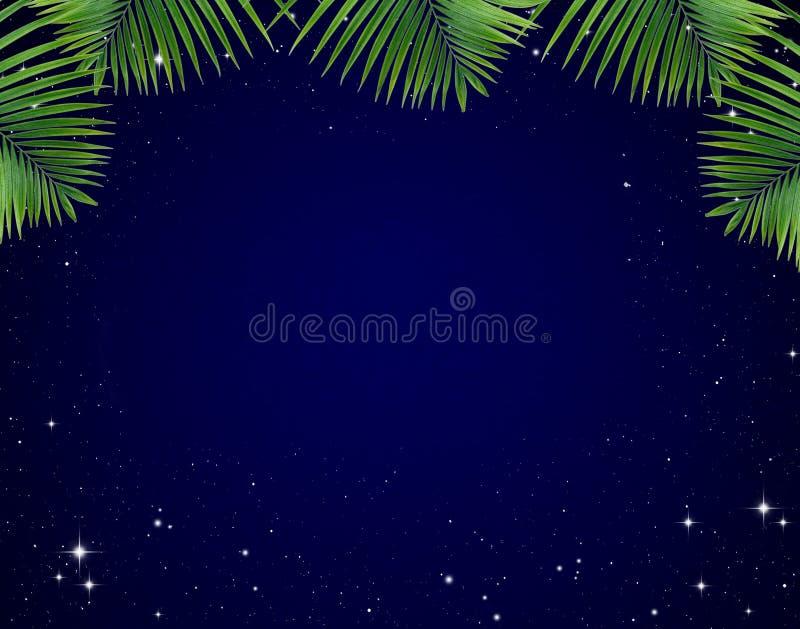 Het frame van bladeren op Sterren in de nachthemel vector illustratie