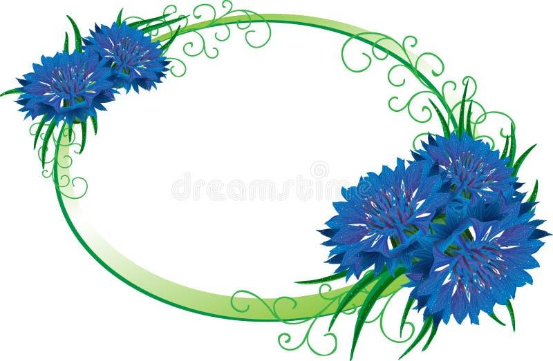Het frame van de bloem Geïsoleerde boeketkorenbloem stock illustratie