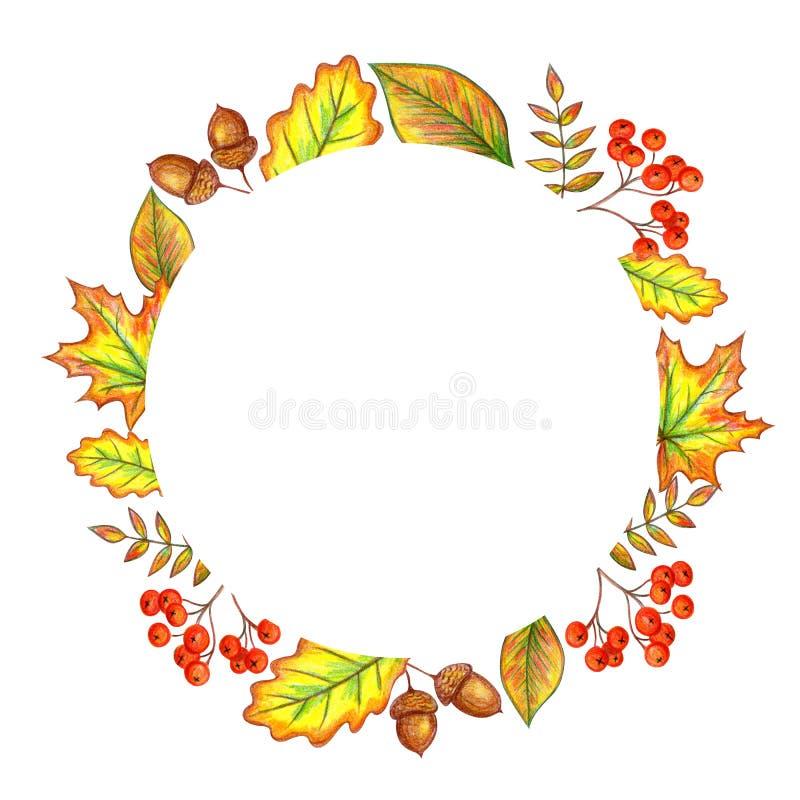 Het frame van de herfst Mooie echte bladeren die op wit worden ge?soleerdg stock illustratie