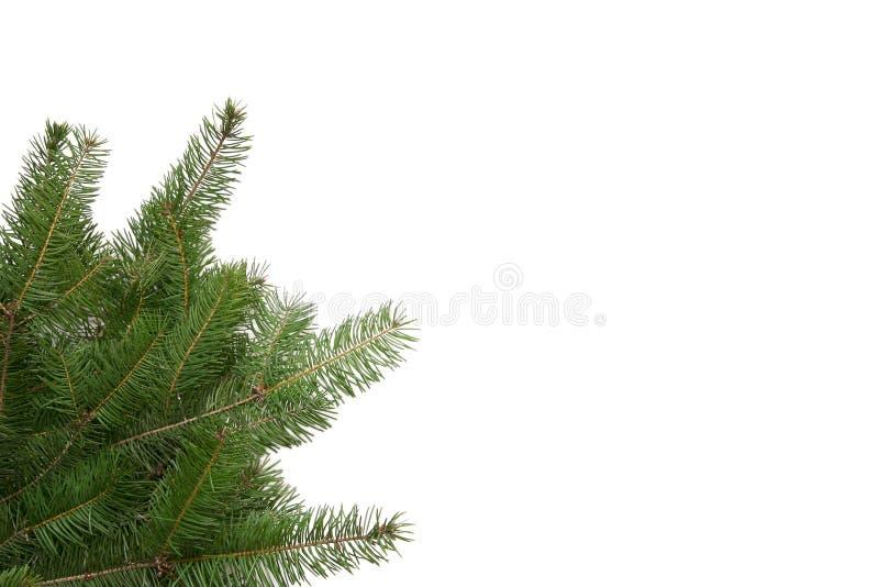 Het frame van de kerstboom stock foto