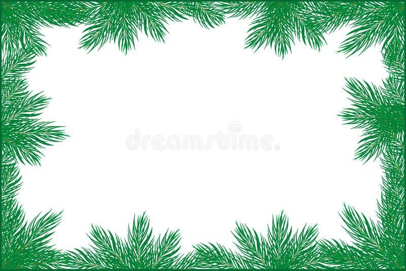 Het frame van de pijnboom vector illustratie