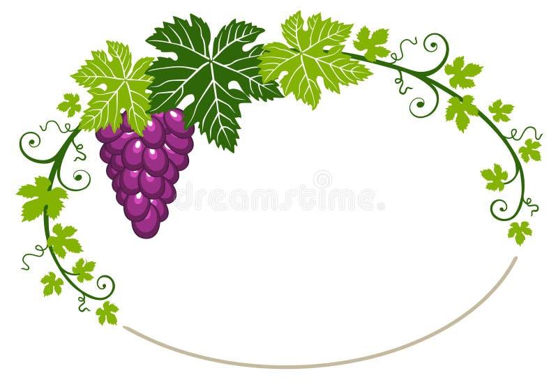 Het frame van druiven met bladeren op witte achtergrond royalty-vrije illustratie