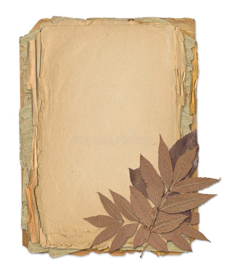 Het frame van Grunge voor oud portret of beeld royalty-vrije illustratie