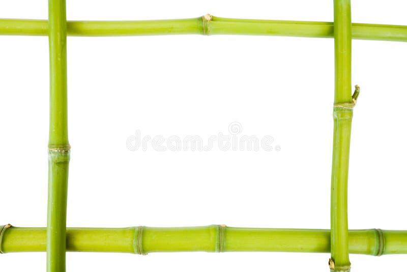 Het frame van het bamboe