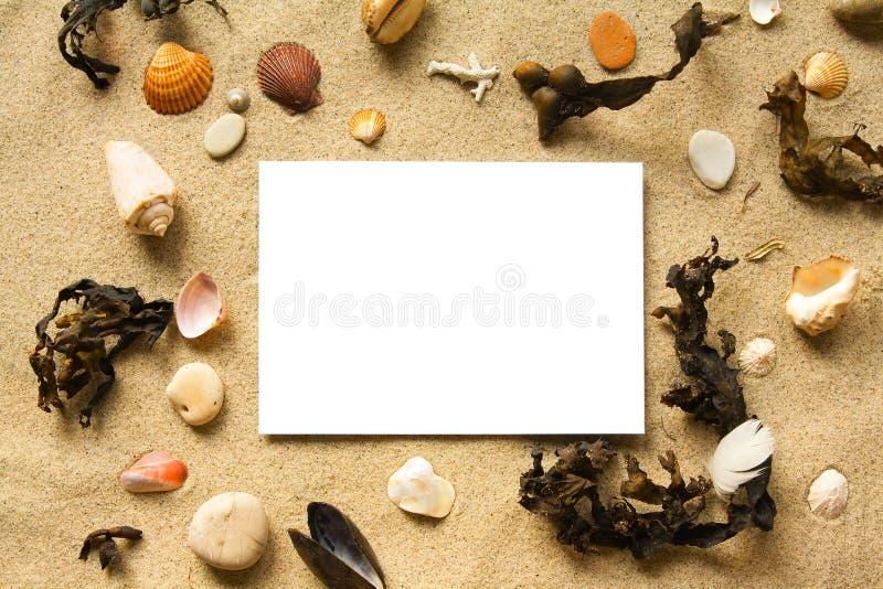 Het frame van het strand stock foto's
