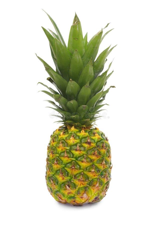Het fruit van de ananas stock afbeeldingen
