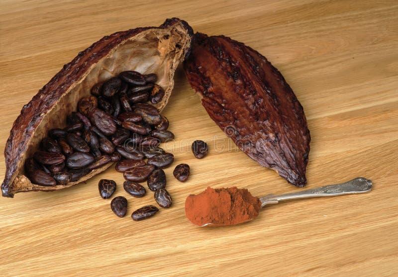 Het fruit van de cacao royalty-vrije stock fotografie
