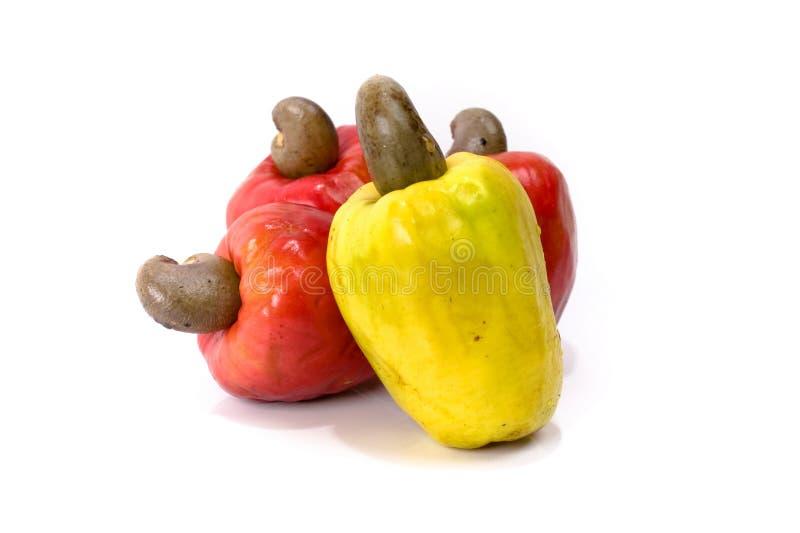 Het Fruit van de cachou royalty-vrije stock afbeelding