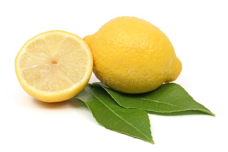 Het fruit van de citroen royalty-vrije stock fotografie