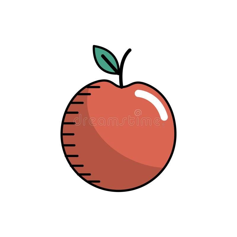Het fruit van de Decliciousappel met natuurlijke ingrediënten royalty-vrije illustratie