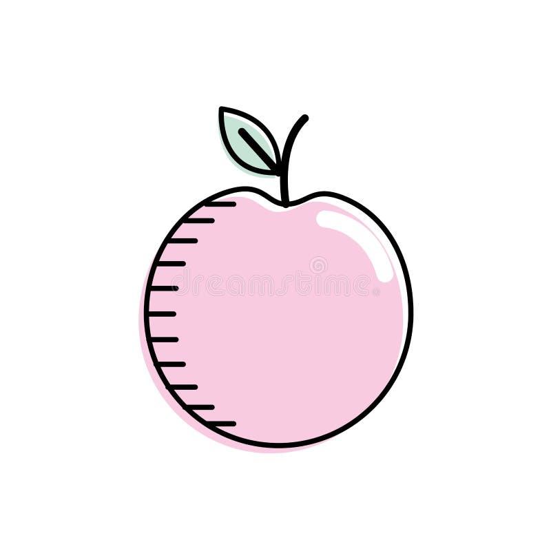 Het fruit van de Decliciousappel met natuurlijke ingrediënten stock illustratie