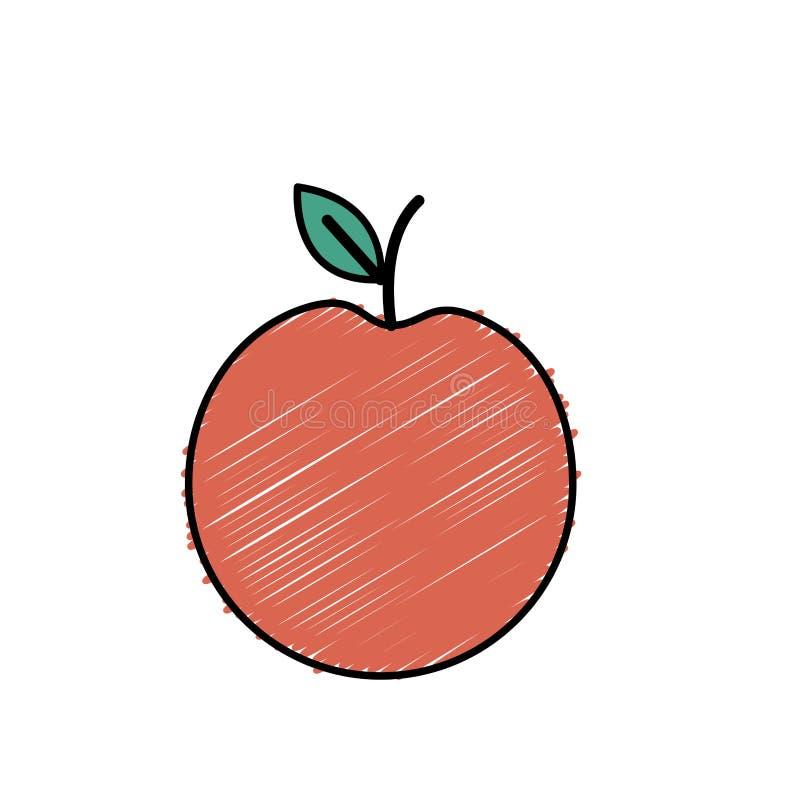 Het fruit van de Decliciousappel met natuurlijke ingrediënten vector illustratie