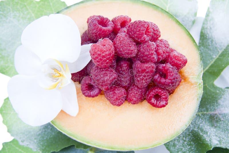 Het fruit van de meloen en van de framboos royalty-vrije stock afbeeldingen