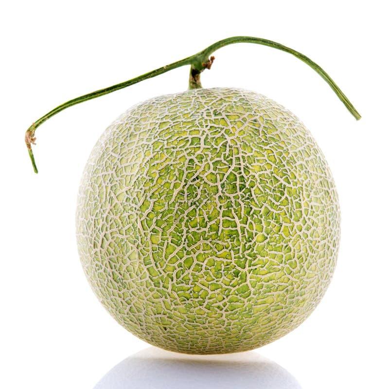 Het fruit van de rotsmeloen. royalty-vrije stock foto's