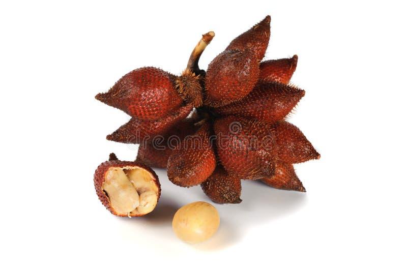 Het fruit van de Salakslang op witte achtergrond wordt geïsoleerd die stock fotografie
