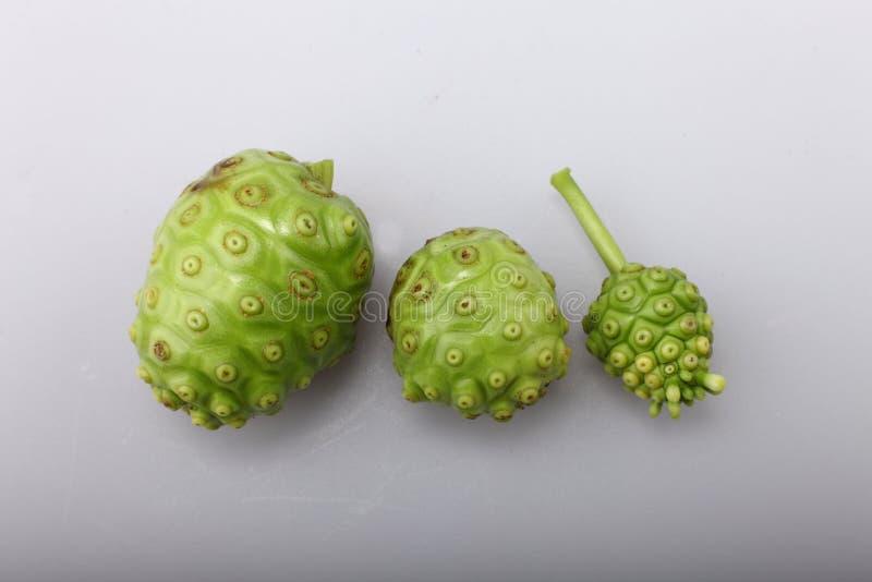 Het Fruit Van Noni Stock Foto