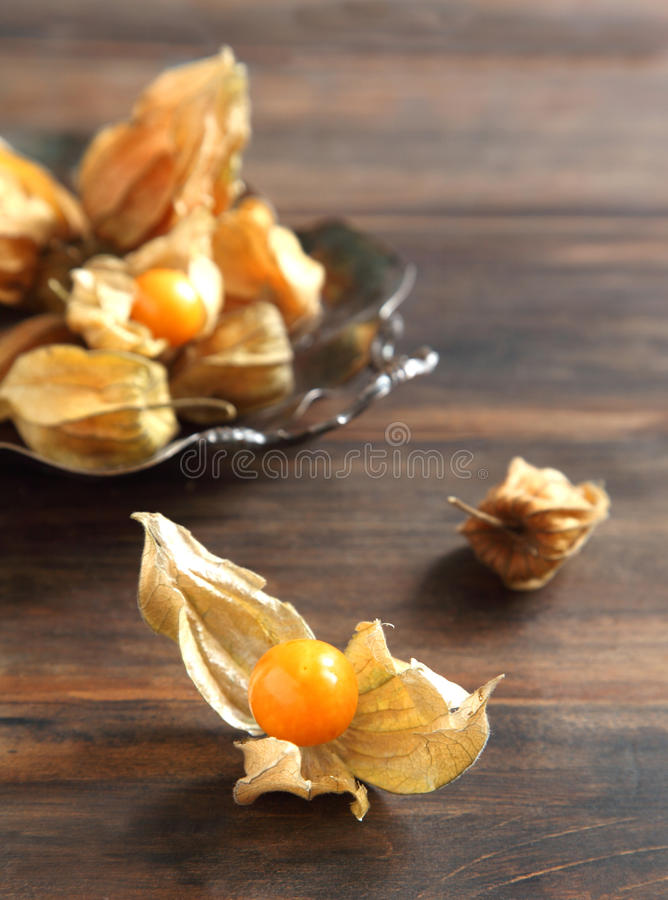 Het fruit van Physalis royalty-vrije stock afbeeldingen
