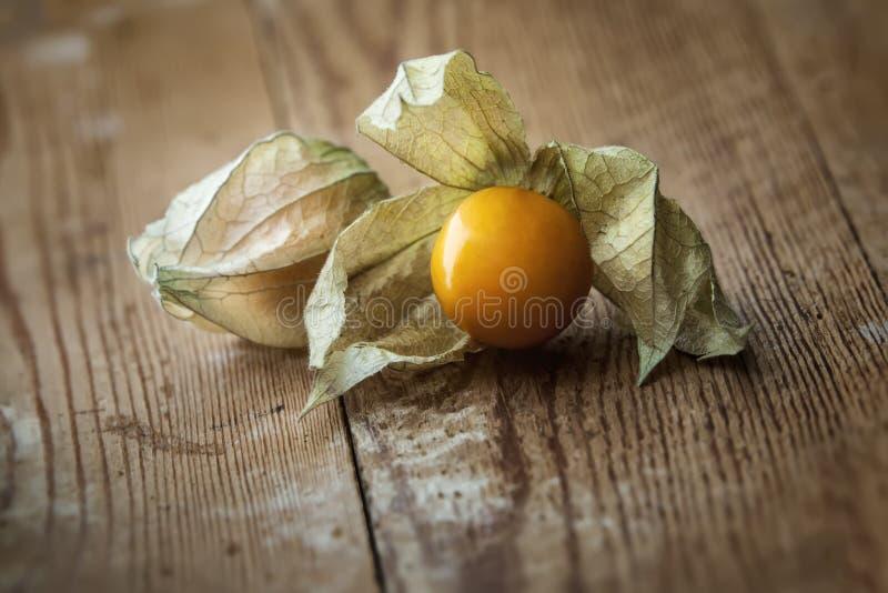 Het fruit van Physalis royalty-vrije stock afbeelding