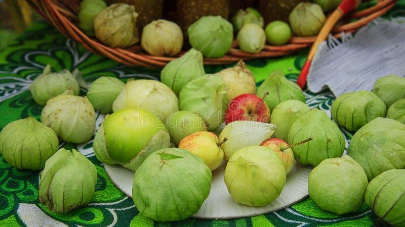 Het fruit van Physalis royalty-vrije stock foto