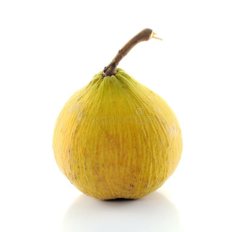 Het fruit van Santol stock foto's