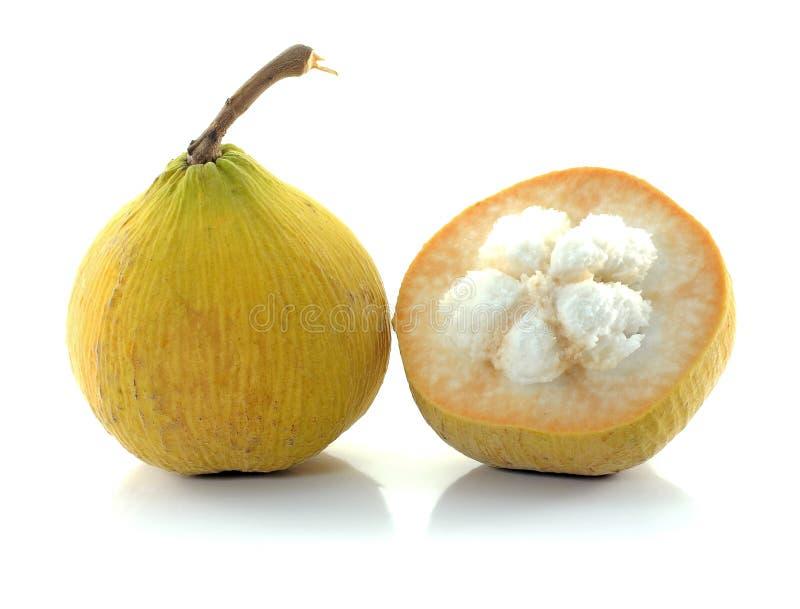 Het fruit van Santol royalty-vrije stock foto's