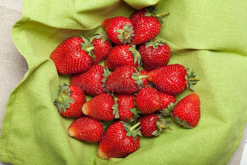 Het fruitachtergrond van de landbouwbedrijfaardbei, oogst royalty-vrije stock afbeeldingen